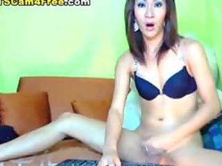 horny tgirl strokes her penis
