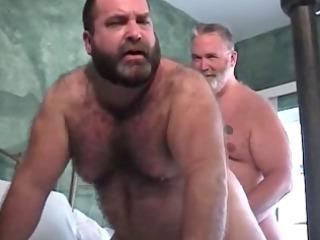 xxxl large dad the repair bear