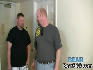 gay bears drilling chunky butt hardcore part3