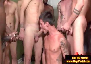 bukkake homosexual guys - wicked bareback facial